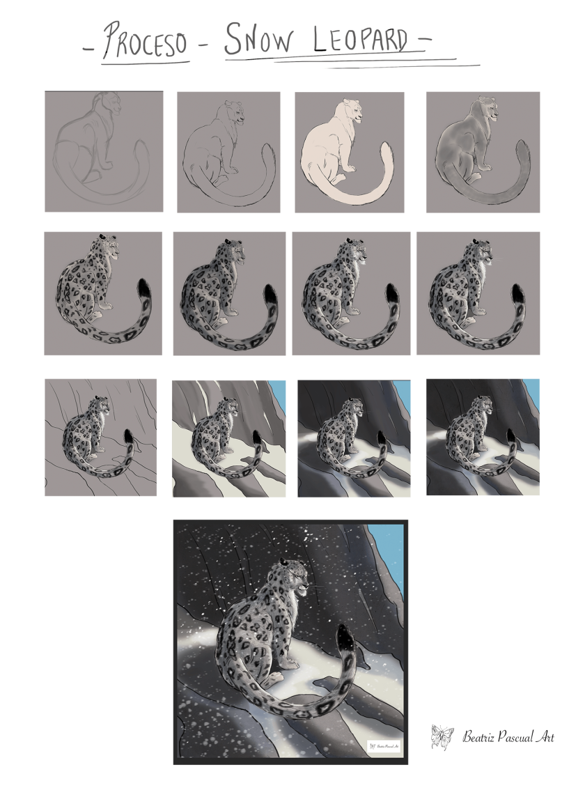 proceso snow leopardproceso.png